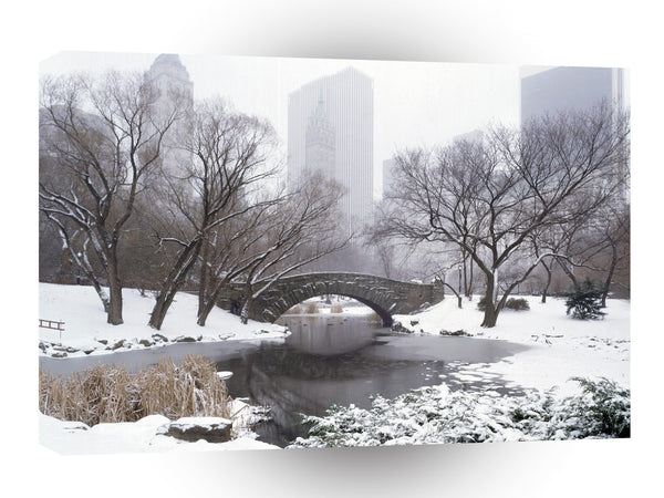 New York Central Park In Winter A1 Xlarge Canvas