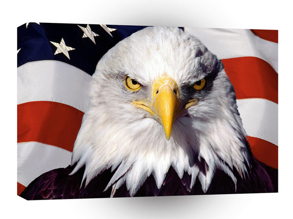Patriotic American Bald Eagle Patriot A1 Xlarge Canvas