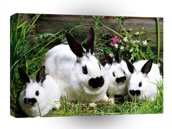 Rabbit Bunch O Bunnies A1 Xlarge Canvas