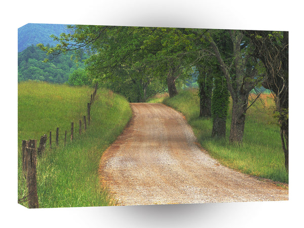Roads Country Cove Great Smoky Mountains Tennessee A1 Xlarge Canvas