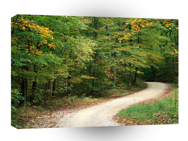Roads Country Road In Autumn Nashville Indiana A1 Xlarge Canvas