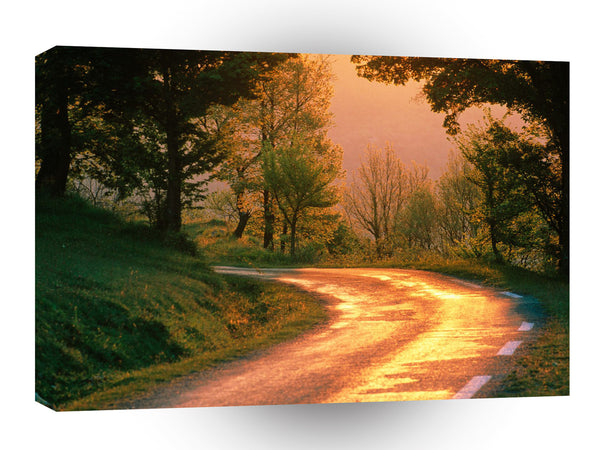 Roads Golden Road France A1 Xlarge Canvas