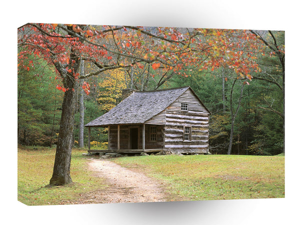 Scene Historic Log Cabin In Smoky A1 Xlarge Canvas