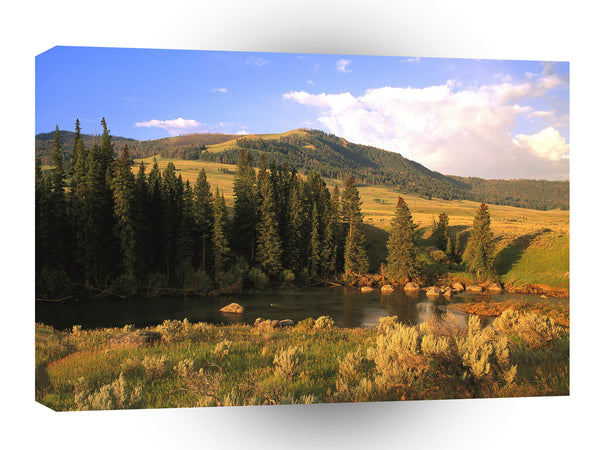 Scene Lamar Valley Yellowstone Wyoming A1 Xlarge Canvas
