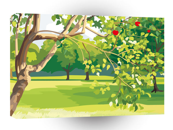 Scenery Apple Park Grassland A1 Xlarge Canvas