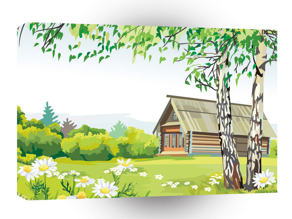Scenery Birch Garden Daisy House A1 Xlarge Canvas