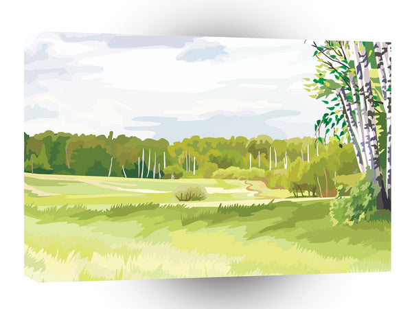 Scenery Birch Woods Green Land A1 Xlarge Canvas