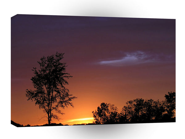 Sunset African Delight A1 Xlarge Canvas