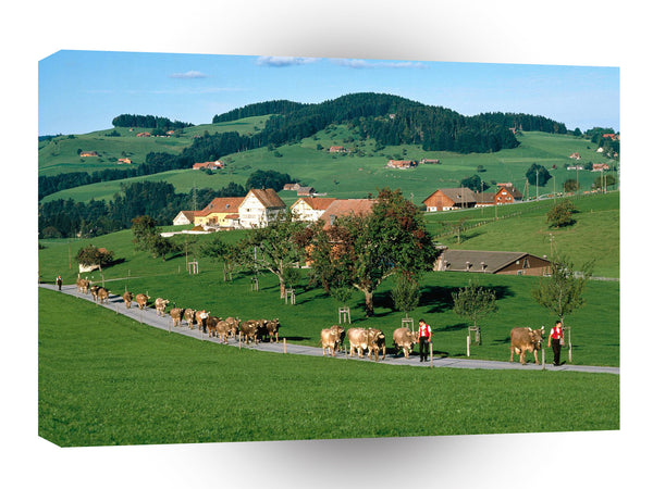 Switzerland Appenzell A1 Xlarge Canvas