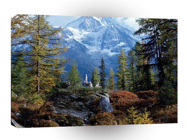Switzerland Bietschhorn Valais A1 Xlarge Canvas