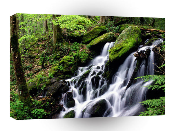 Water After The Rain Smoky Mountains A1 Xlarge Canvas