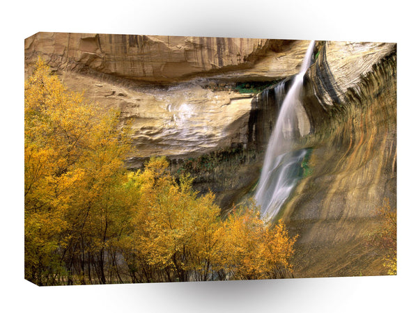 Waterfall Calf Grand Escalante Monument Utah A1 Xlarge Canvas