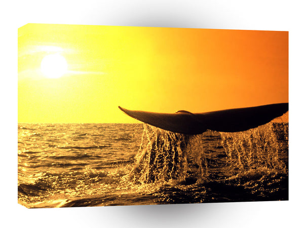 Whale Heading North California A1 Xlarge Canvas