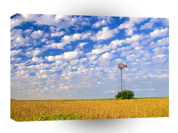Windmills Country Field Illinois A1 Xlarge Canvas