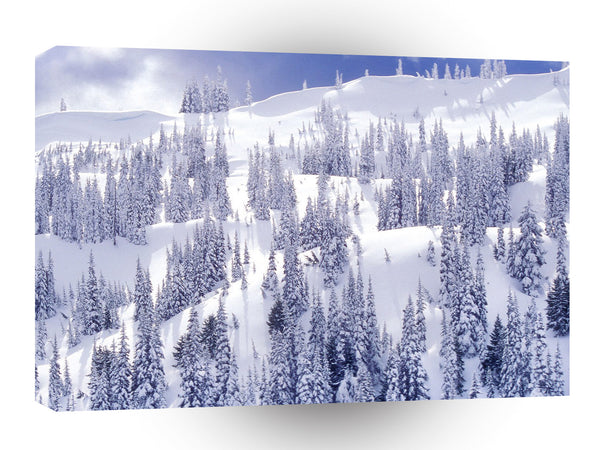 Winter A Comforter White Hurricane Ridge Olympic A1 Xlarge Canvas