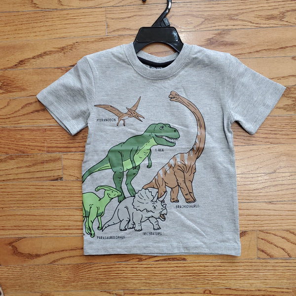 CR Sports Gray Dino T-shirt