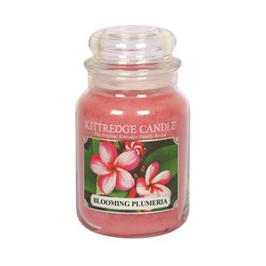 Blooming Plumeria Kittredge 23oz Candle Jar