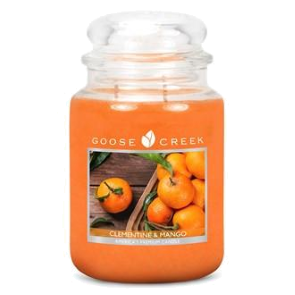 Clementine & Mango Goose Creek 24oz Scented Candle Jar