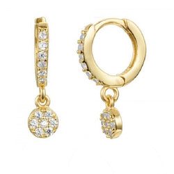 Mono Coin Zircons Earring