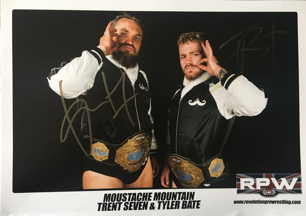 Signed Moustache Mountain A4 Print