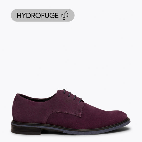 HARVARD - Chaussure pour homme VIN hydrofuge