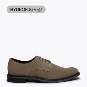 HARVARD - Chaussure pour homme TAUPE hydrofuge