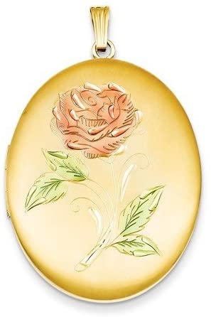 The Men's Jewelry Store (for HER) Yellow Gold Filled 1/20 Sterling Silver Red Rose Oval Locket Pendant