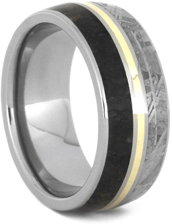 Dinosaur Bone, Gibeon Meteorite, 14k Yellow Gold 9mm Titanium Comfort-Fit Wedding Band, Size 5
