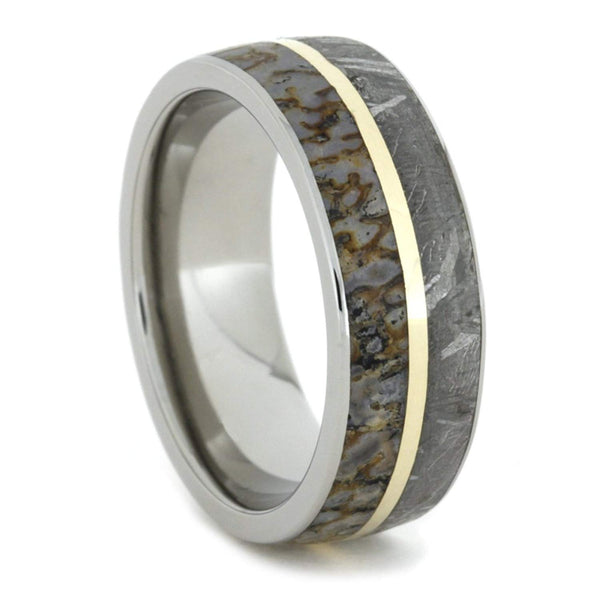Gibeon Meteorite, Dinosaur Bone, 14k Yellow Gold 8mm Comfort Fit Titanium Band