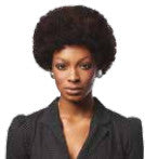 Sleek - Premium Human Hair Wig - Afro