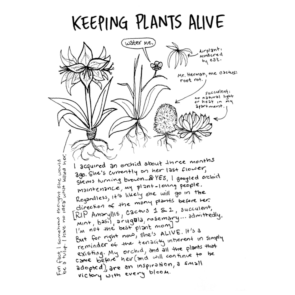 """Everything is Going to be Okay"" Zine by Elise Ingber, inner page ""keeping the plants alive"""