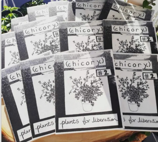 Herbalism Zine - Plants for Liberation. Written and printed in NOLA
