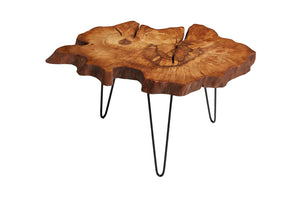 Hornbeam Tree Live Edge Coffee Table, Live Edge Table, Rustic Edge End Table - Naturalist USA