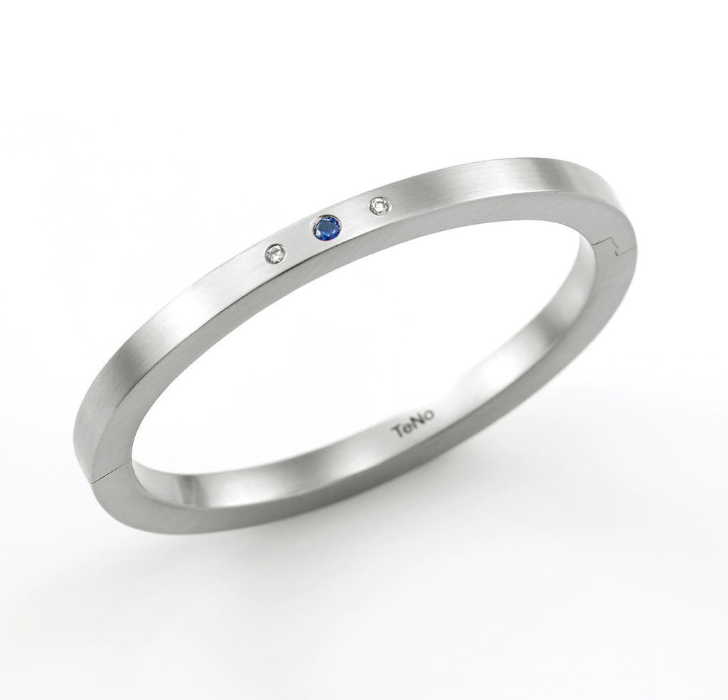 029.02S05SB TeNo Stainless Steel Bangle