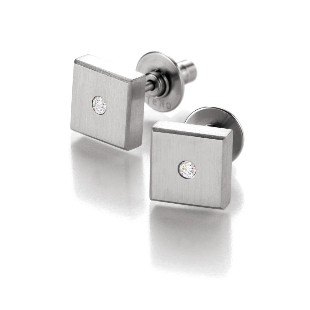 039.1312.00 TeNo Stainless Steel Earrings