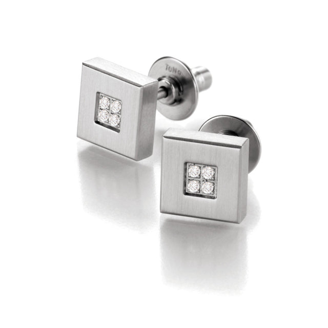 039.13P01.00 TeNo Stainless Steel Earrings