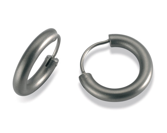23606-01 TeNo Titanium Earrings
