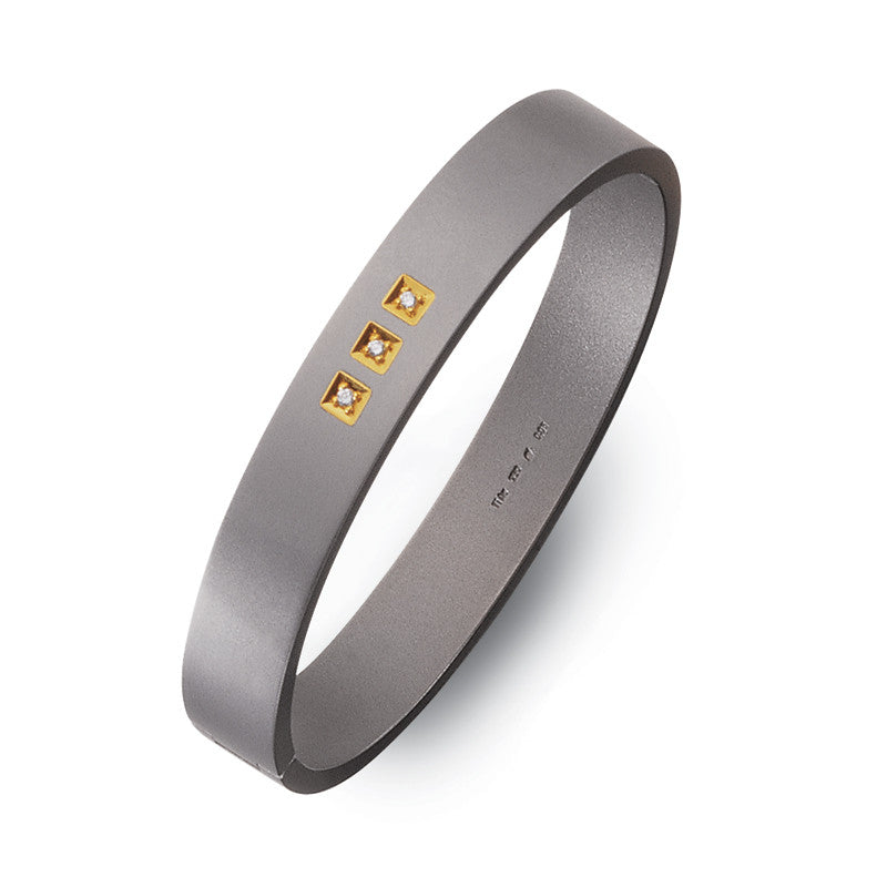 60204-01 Teno Titanium Bangle