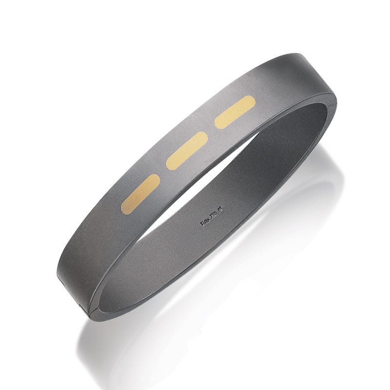 60152-01 Teno Titanium Bangle