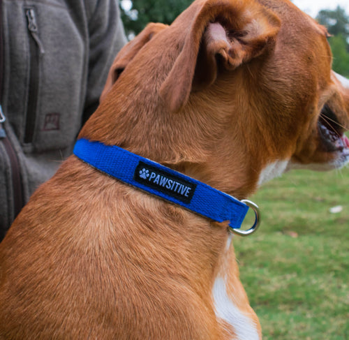 100% Hemp Adjustable Dog Collar