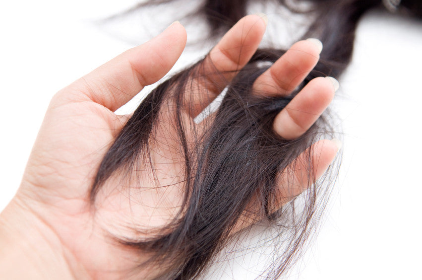 Find Out What Caused Your Hair Loss