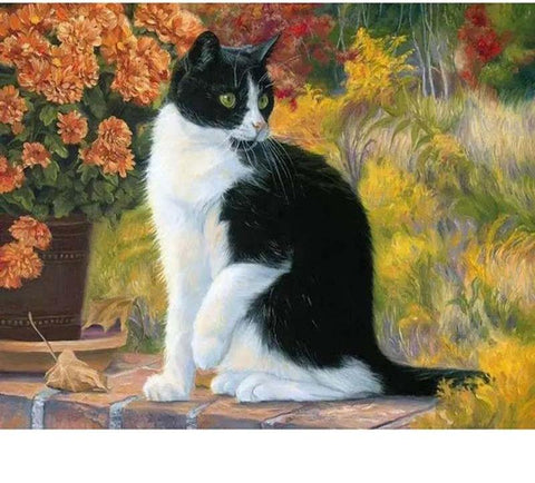 "DIY Painting By Numbers - Realism Cat (16""x20"" / 40x50cm)"