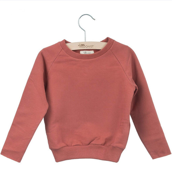 Organic Cotton Jersey Sweater in Brick