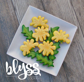 Blyss side yellow dandelion