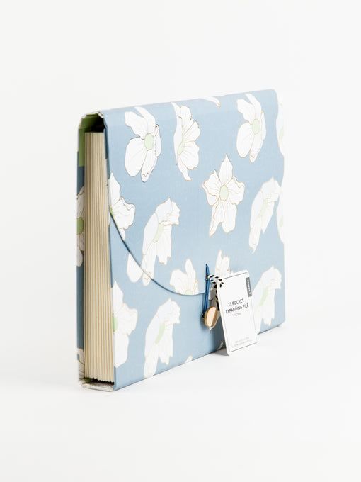 Blueming 13 Pocket Expandable File