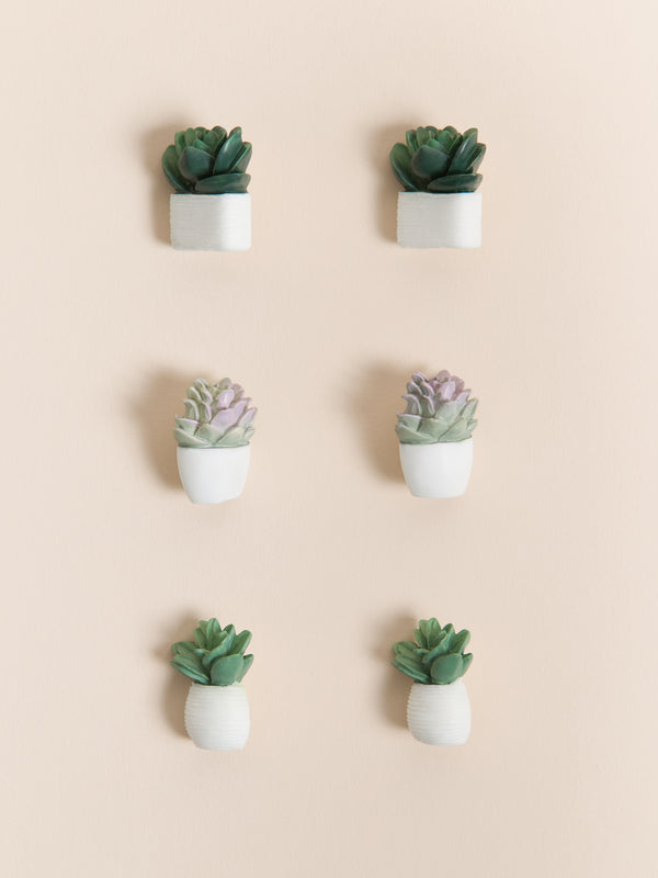 Potted Succulent Push Pins, Set of 6