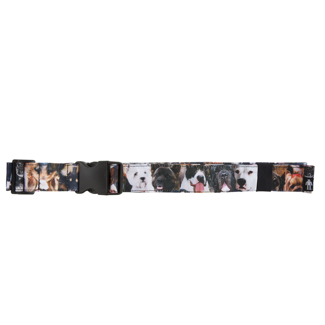 Acembly Dogs Waistpack Belt, front view