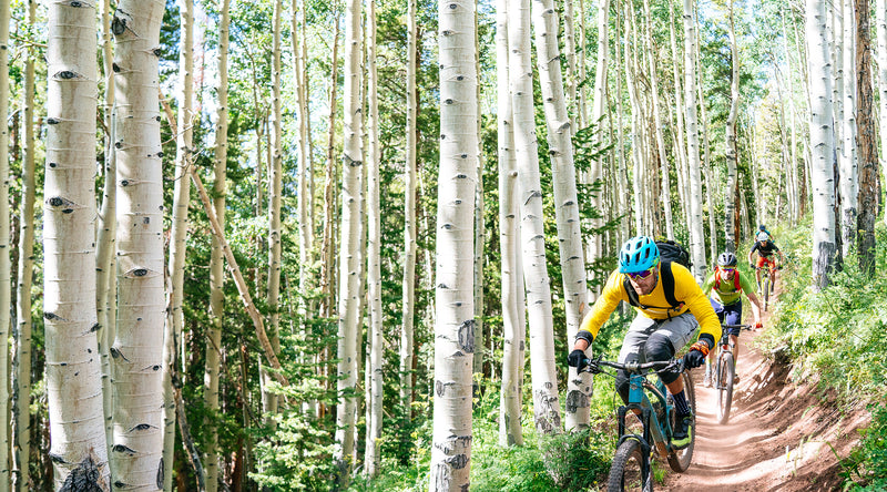 velocio delta long sleeve pretty neat aspens