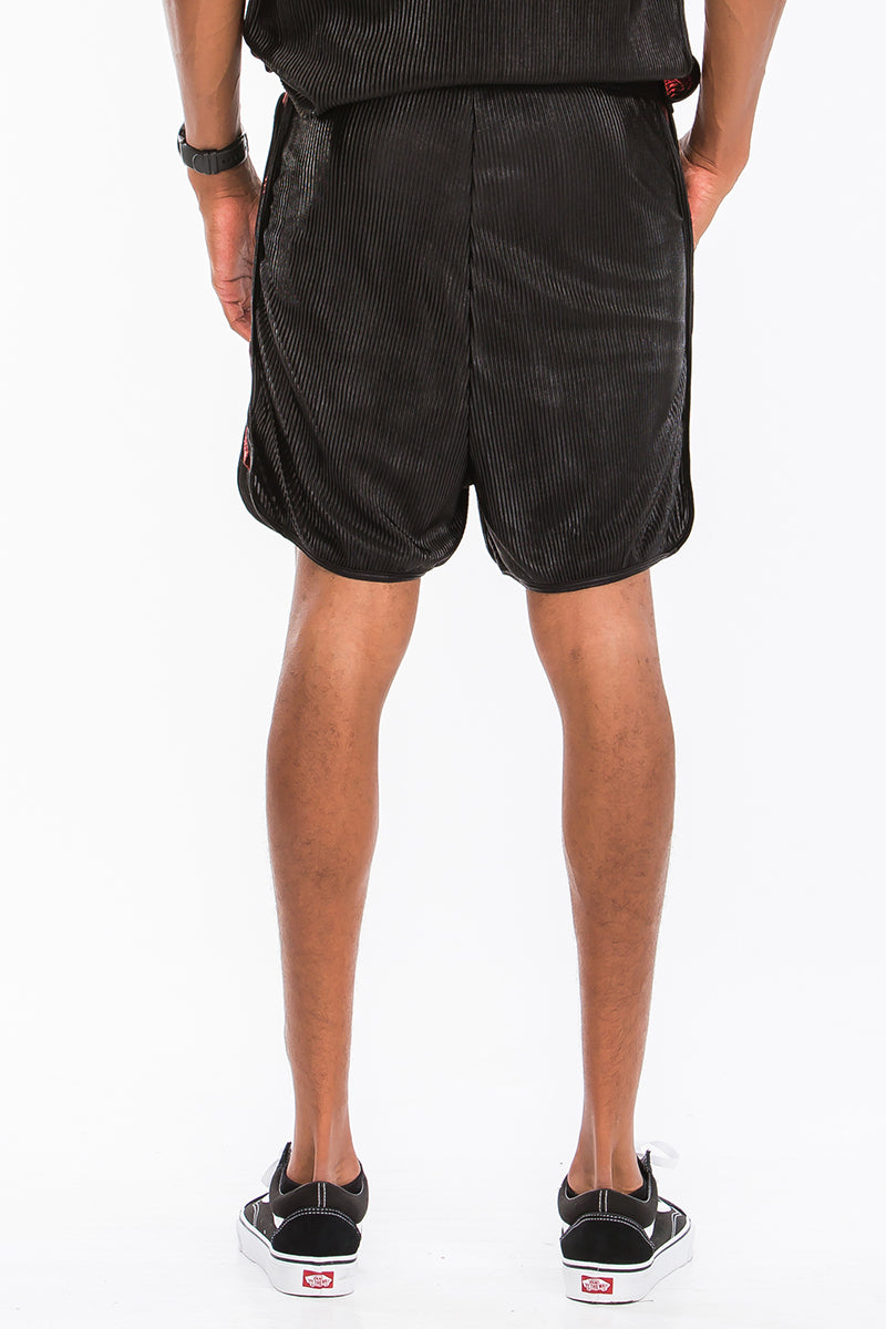Metallic Two Color Shorts