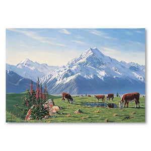 Foxgloves Mt Cook Canvas By Peter Morath,NZ ART,The Outpost NZ The Outpost NZ, New Zealand, outpost, Queenstown
